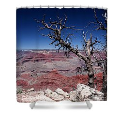 Shower Curtain featuring the photograph Grand Canyon Number One by Lon Casler Bixby
