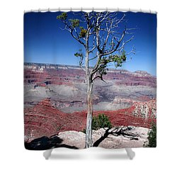 Shower Curtain featuring the photograph Grand Canyon Number Two by Lon Casler Bixby
