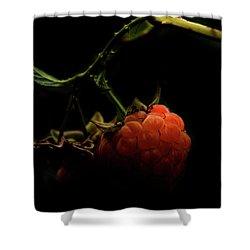 Grandmas Berries Shower Curtain by Jerry Cordeiro