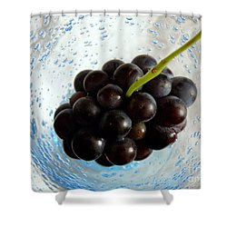 Grape Cluster In Biot Glass Shower Curtain by Lainie Wrightson