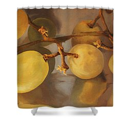 Grapes On Foil Shower Curtain