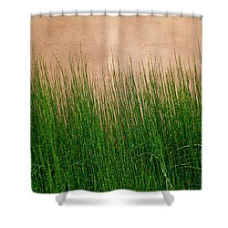 Shower Curtain featuring the photograph Grass And Stucco by David Pantuso
