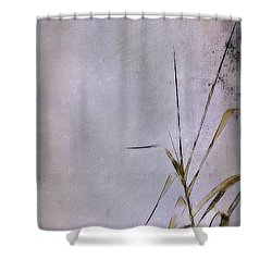 Grass And Wall Shower Curtain by Judi Bagwell