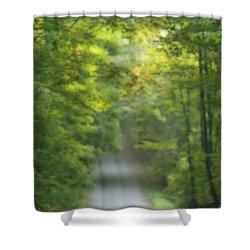 Gravel Road, Niagara Region, Pelham Shower Curtain by Darwin Wiggett