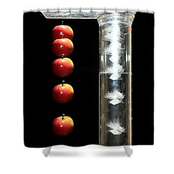 Gravity Comparison Shower Curtain by Ted Kinsman