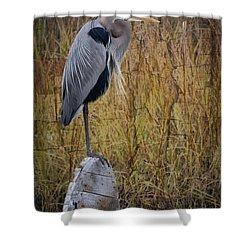 Great Blue Heron On Spool Shower Curtain by Debra and Dave Vanderlaan