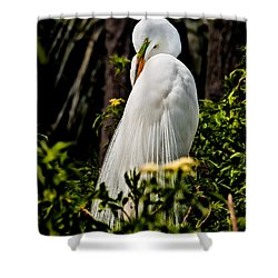 Great Egret Shower Curtain by Christopher Holmes