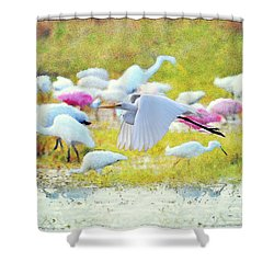 Shower Curtain featuring the photograph Great Egret Flying by Dan Friend