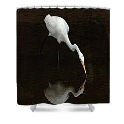 Great Egret Reflection Shower Curtain by Bob Christopher