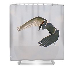 Great Egret Successful Fishing Shower Curtain