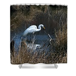 Great Egret With Fish Dmsb0034 Shower Curtain by Gerry Gantt