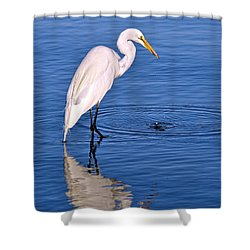 Great Egret With Shrimp Shower Curtain