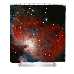 Great Nebula In Orion Shower Curtain by Science Source