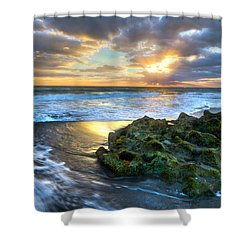 Green And Gold Shower Curtain by Debra and Dave Vanderlaan