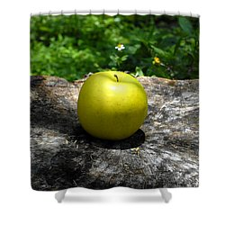 Green Apple Shower Curtain by David Lee Thompson