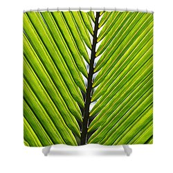 Green Fronds Shower Curtain by Lauri Novak