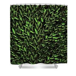 Green Leaf Shower Curtain by David Dehner