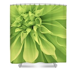 Green Sherbet Shower Curtain by Bruce Bley