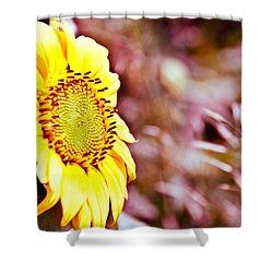 Greeting The Sun. Shower Curtain by Cheryl Baxter