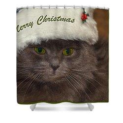 Grey Cat Santa 2 Shower Curtain by Joann Vitali