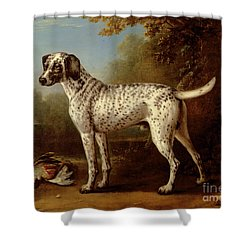 Grey Spotted Hound Shower Curtain by John Wootton