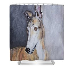 Greyhound In Thought Shower Curtain by George Pedro