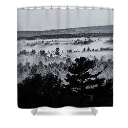 Ground Fog Shower Curtain by Susan Capuano