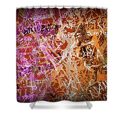 Grunge Background 3 Shower Curtain by Carlos Caetano