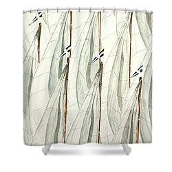 Guidoni Shower Curtain by Giovanni Marco Sassu