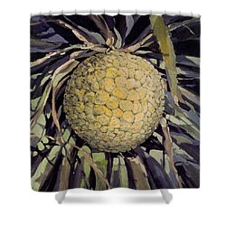 Shower Curtain featuring the painting Hala Fruit by Andrew Drozdowicz
