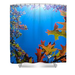 Happy Autumn Shower Curtain by CML Brown