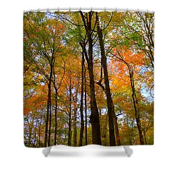 Happy Orange Shower Curtain by Ed Smith