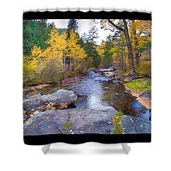 Happy Place In The Woods Panorama Poster  Shower Curtain by James BO  Insogna