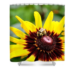 Happy Rudbeckia Shower Curtain