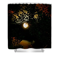 Shower Curtain featuring the photograph Haunting Moon IIi by Jeanette C Landstrom