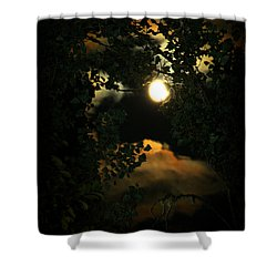 Shower Curtain featuring the photograph Haunting Moon by Jeanette C Landstrom