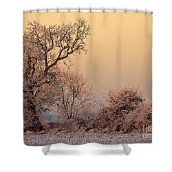 Frost 2 Shower Curtain by Linsey Williams
