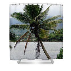 Shower Curtain featuring the photograph Hawaiian Palm by Athena Mckinzie