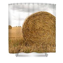 Hay Bales Shower Curtain by Edward Fielding