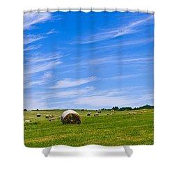 Hay Bales Under Brilliant Blue Sky Shower Curtain