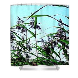 Hay In The Summer Shower Curtain by Pauli Hyvonen