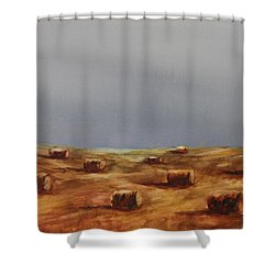 Hayfield Shower Curtain by Ruth Kamenev