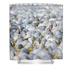 Healing Garden Shower Curtain by Ivy Ho