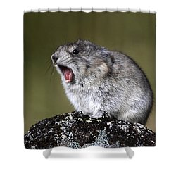 Hear Me Roar Shower Curtain