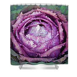 Heart Of Mystery Shower Curtain
