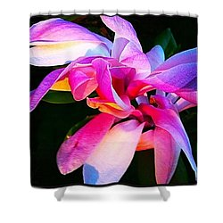 Heart Of The Magnolia By Anna Porter Shower Curtain