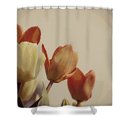 Shower Curtain featuring the photograph Heavenly Glow by Marilyn Wilson