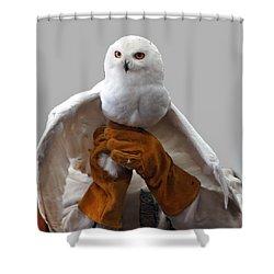 Hedwig Harry Potters Pet Shower Curtain by LeeAnn McLaneGoetz McLaneGoetzStudioLLCcom
