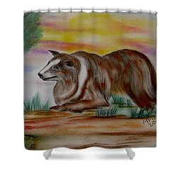 Shower Curtain featuring the drawing Herding Collie by Maria Urso