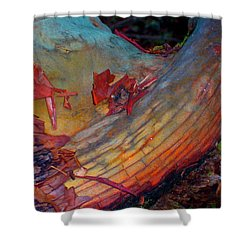 Shower Curtain featuring the digital art Here And Now by Richard Laeton